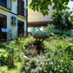 Гостевой дом «Лидия» в Архипо-Осиповке